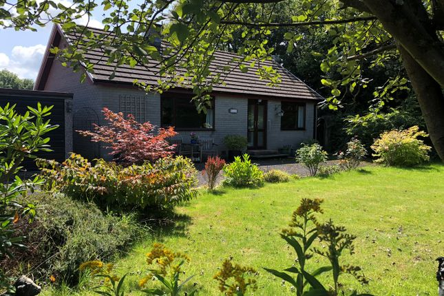 Thumbnail Detached bungalow for sale in Cilcennin, Nr. Aberaeron