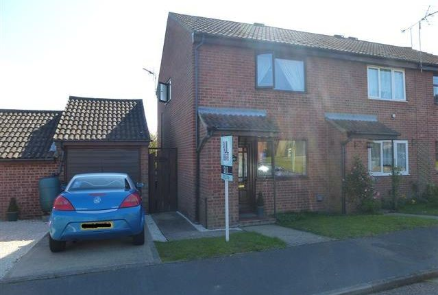 Thumbnail Property to rent in Field View Gardens, Beccles