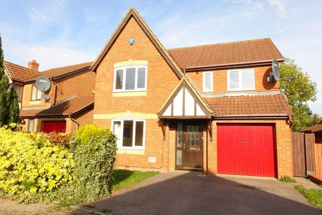 Thumbnail Detached house to rent in Braford Gardens, Shenley Brook End, Milton Keynes