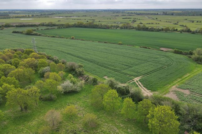 Thumbnail Farm for sale in Pickhill Land & Buildings, Snargate Road, Appledore, Ashford