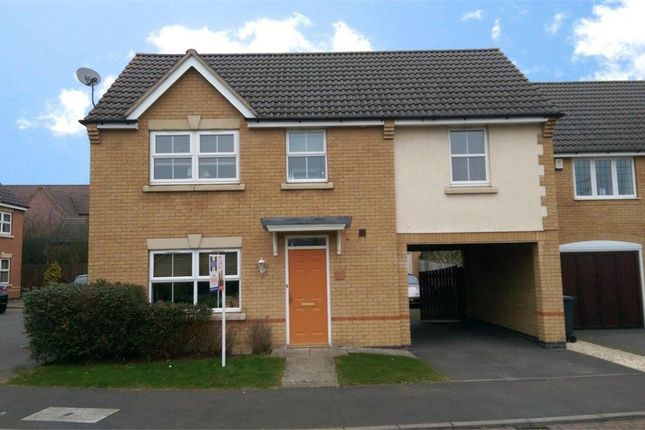 Thumbnail Detached house to rent in Turnstone Close, Coton Meadows, Rugby, Warwickshire