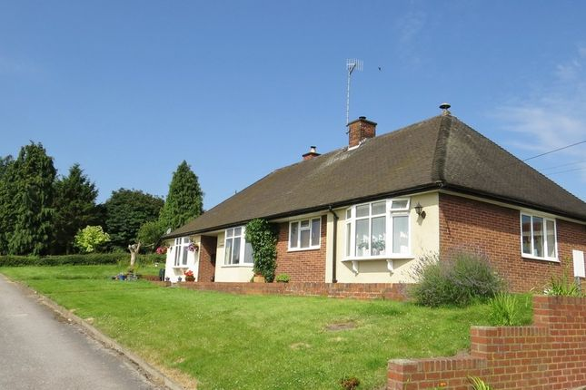 Thumbnail Detached bungalow for sale in Handley Road, New Whittington, Chesterfield
