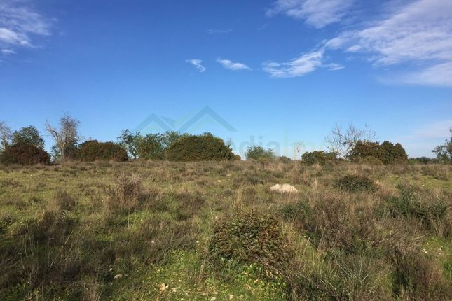 Land for sale in Ferreiras, Ferreiras, Albufeira