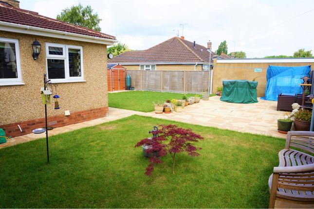 Garden of Highclere Avenue, Swindon SN3