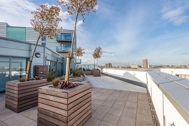 Rooftop Gardens of Avantgarde Place, Shoreditch E1