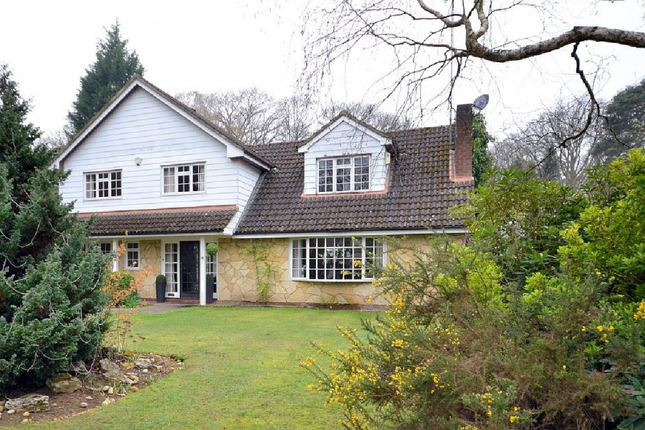 Thumbnail Detached house to rent in Ince Road, Burwood Park, Walton On Thames