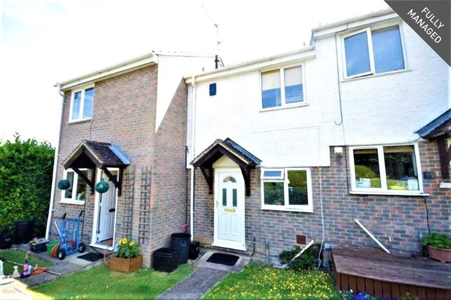 Thumbnail Terraced house to rent in Swallow Way, Wokingham, Berkshire