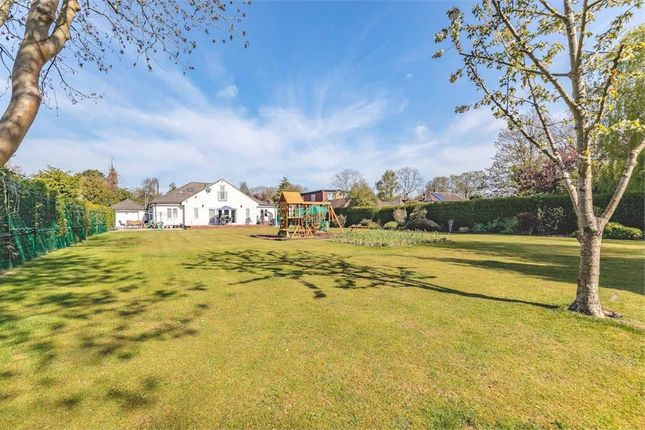 Thumbnail Detached house for sale in Frays Avenue, West Drayton, Middlesex