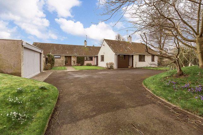 Thumbnail Detached house for sale in Hepburn Gardens, St Andrews, Fife