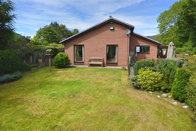 Thumbnail Bungalow for sale in Pontdolgoch, Caersws, Powys