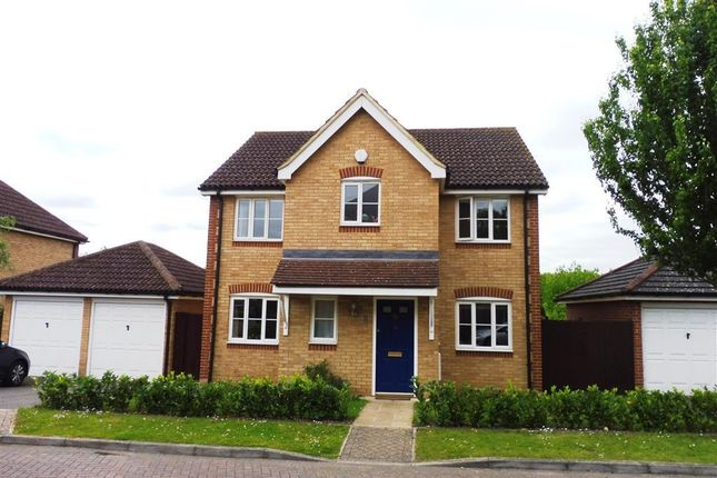 Thumbnail Detached house to rent in Hazel Heights, Ashford