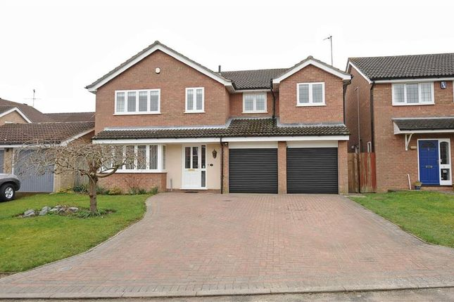 Thumbnail Detached house for sale in Conway Close, Wellingborough