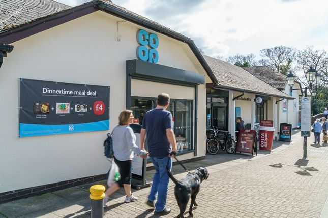 Thumbnail Retail premises for sale in Glanvilles Mill, Ivybridge, Devon