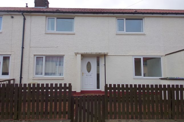 Thumbnail Terraced house to rent in Lee Avenue, Shilbottle, Alnwick