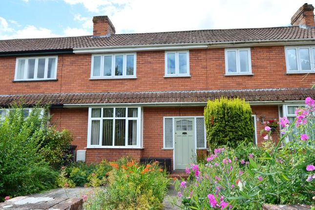 Thumbnail Terraced house for sale in Lowlands Terrace, Bishops Hull, Taunton, Somerset