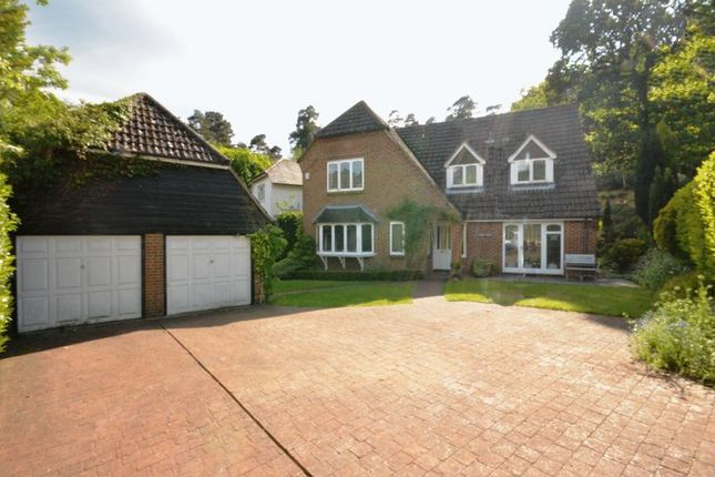 Thumbnail Detached house to rent in Beech Hill, Headley Down, Bordon