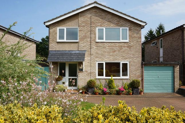 Thumbnail Detached house for sale in Thorney Road, Capel St Mary, Ipswich, Suffolk