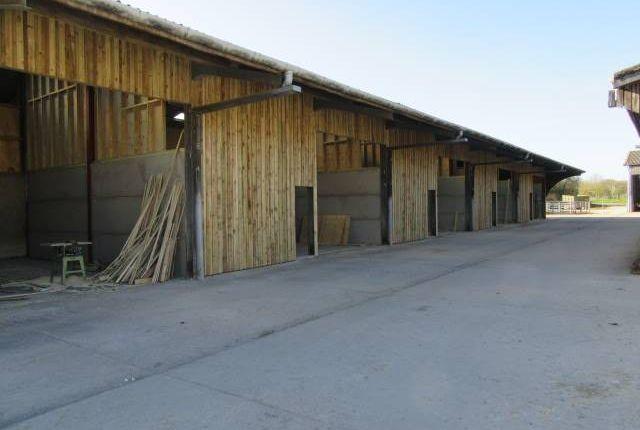 Thumbnail Light industrial to let in Building 1, Dawes Farm, Bognor Road