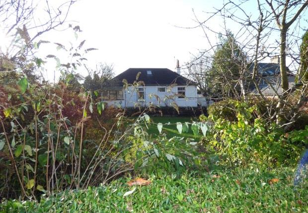 Thumbnail Detached bungalow to rent in Hazelwood, Barhill Road, Dalbeattie, Dumfries And Galloway