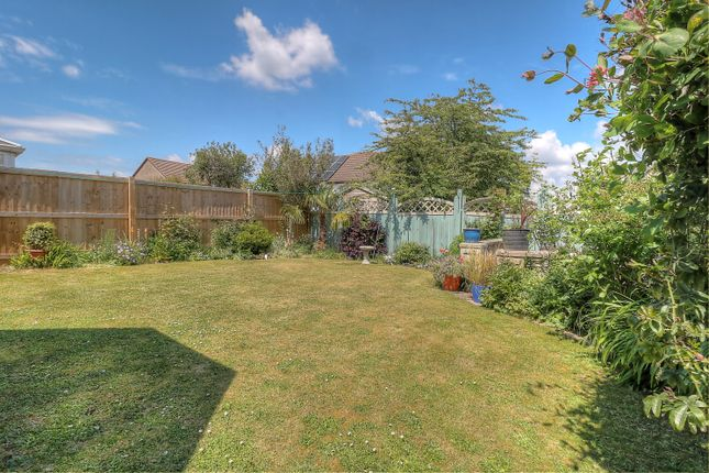 Garden of Bishop Crescent, Shepton Mallet BA4