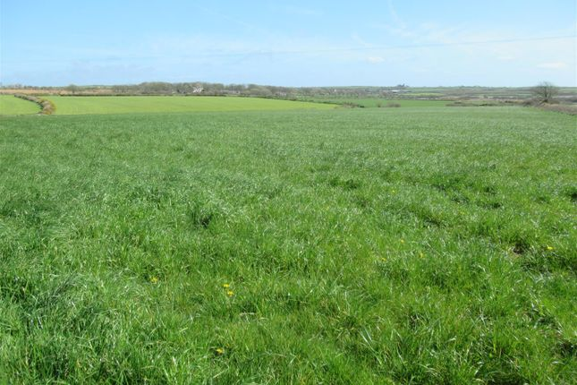 Img_2673 of 25.01 Acres Of Agricultural Land, Mathry, Haverfordwest SA62
