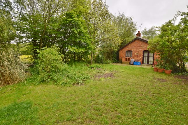 Thumbnail Bungalow to rent in Tally Ho Road, Stubbs Cross, Ashford