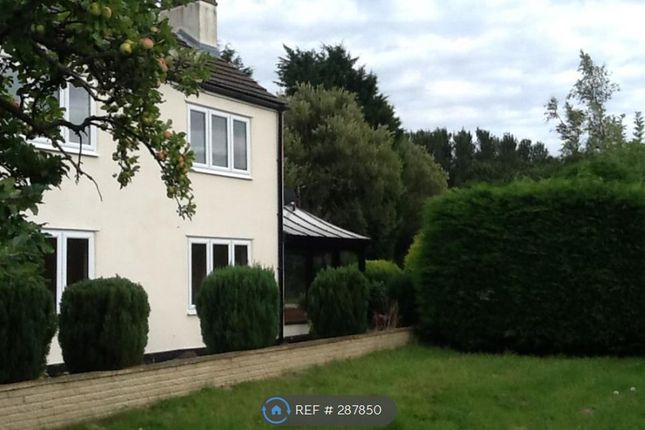 Thumbnail Detached house to rent in Cooper Lane, Northallerton