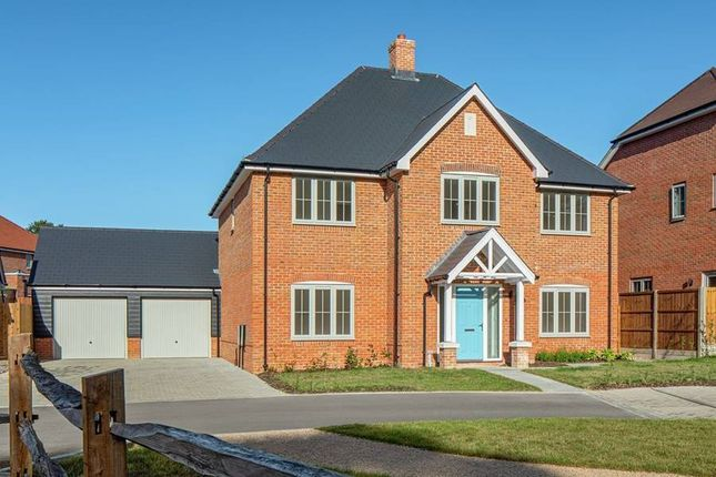 """Thumbnail Detached house for sale in """"The Samville"""" at St. Legers Way, Riseley, Reading"""