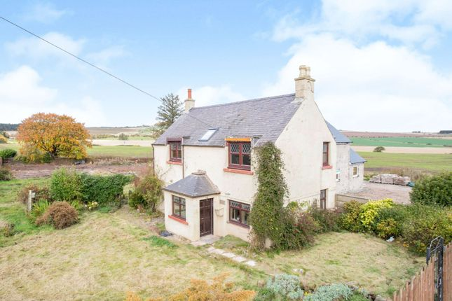 Thumbnail Detached house for sale in Wellgreen, Montrose