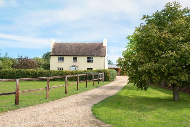 Thumbnail Farmhouse for sale in Stones Green Road, Tendring, Clacton-On-Sea