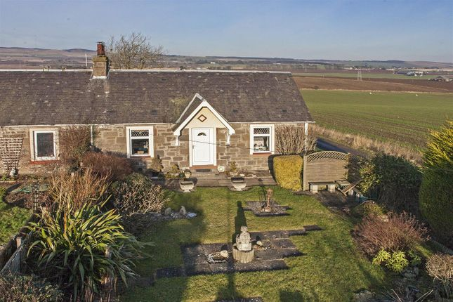 Thumbnail Cottage for sale in Emmock Road, Tealing, Dundee