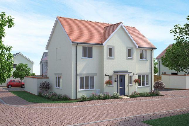 Thumbnail Detached house for sale in Tews Lane, Barnstaple, Devon