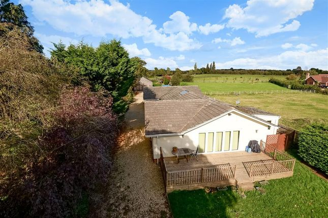 Thumbnail Detached bungalow for sale in Milley Road, Waltham St Lawrence