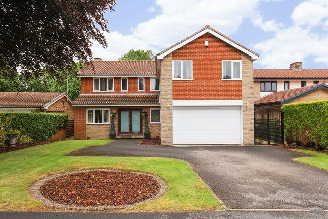 Thumbnail Detached house for sale in Thornsett Gardens, Dore, Sheffield
