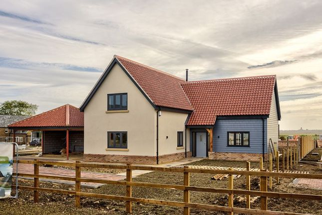 Thumbnail Detached house for sale in Park Close, Coveney, Ely