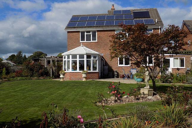 Thumbnail Detached house for sale in Oak Crescent, Ashbourne