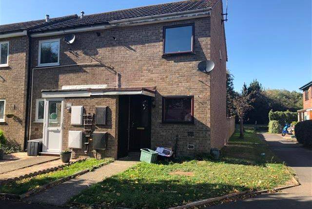 Thumbnail Property to rent in Dovercourt, Harwich, Essex