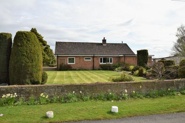 Thumbnail Detached bungalow to rent in Linstock, Carlisle