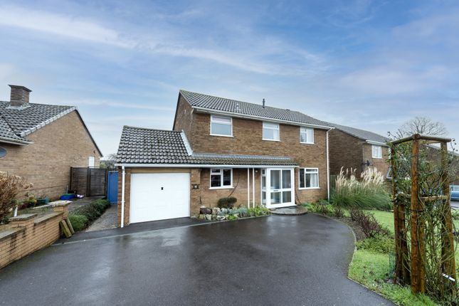 Thumbnail Detached house for sale in Bewley Court, Chard