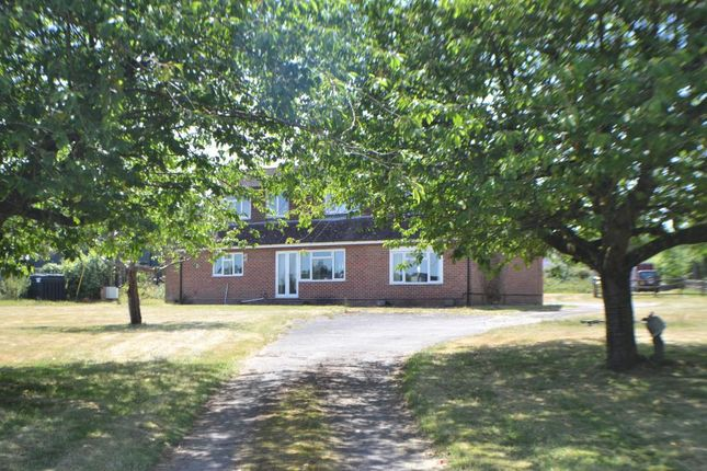 Thumbnail Detached house for sale in Rag Hill, Aldermaston, Reading