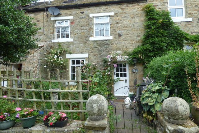 Thumbnail Cottage for sale in 14 East Blackdene, St Johns Chapel, Weardale, Co Durham