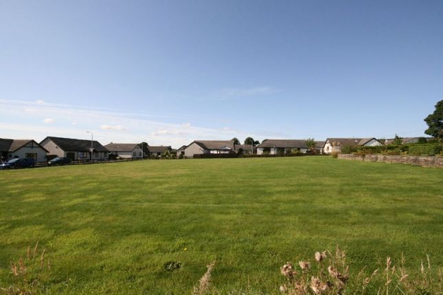Thumbnail Land for sale in Development Plot, Auldbar Road, Letham, Forfar