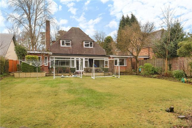 Thumbnail Detached bungalow for sale in The Avenue, Crowthorne, Berkshire