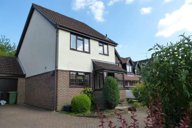 Thumbnail Link-detached house for sale in Basingstoke, Hampshire