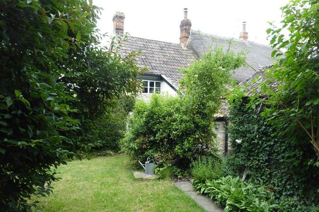 Thumbnail Property to rent in Kingsbury Episcopi, Martock