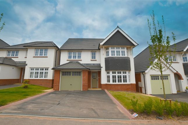 Thumbnail Detached house to rent in Kestrel Way, Dawlish, Devon