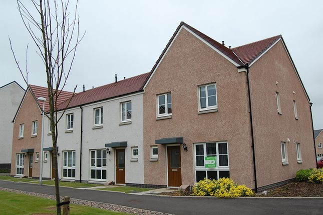 Thumbnail End terrace house to rent in Whitehills Square, Cove, Aberdeen