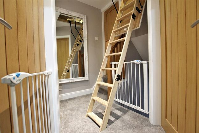 Loft With Fitted Ladders