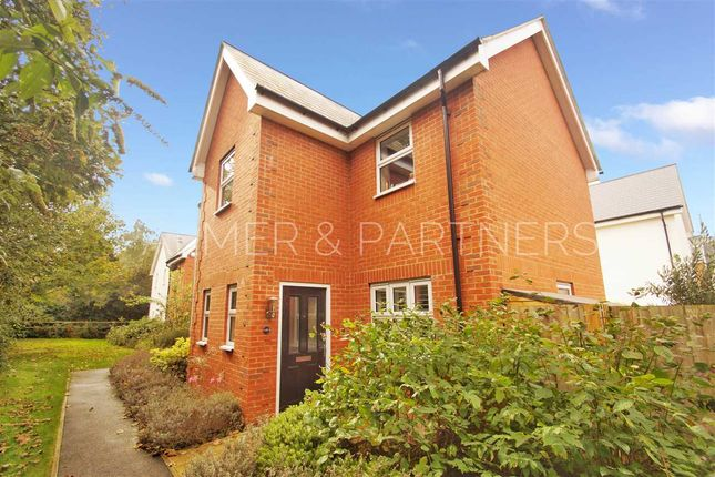 Thumbnail Detached house for sale in Peache Road, Colchester