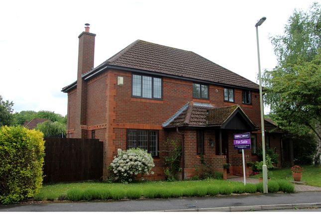Thumbnail Detached house for sale in The Mews, Tadley